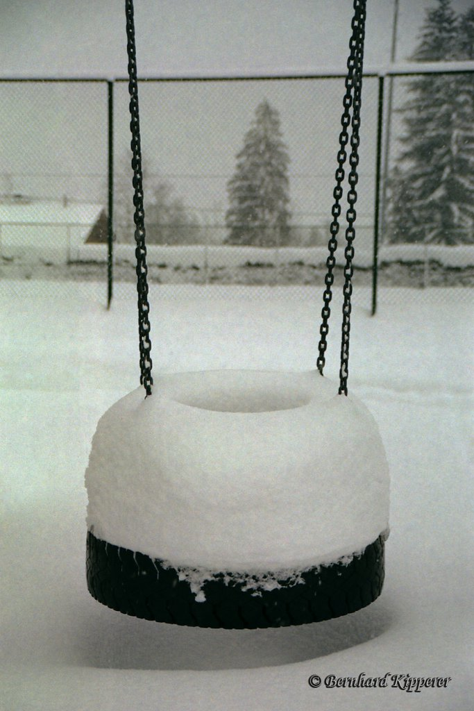 Snow Donut